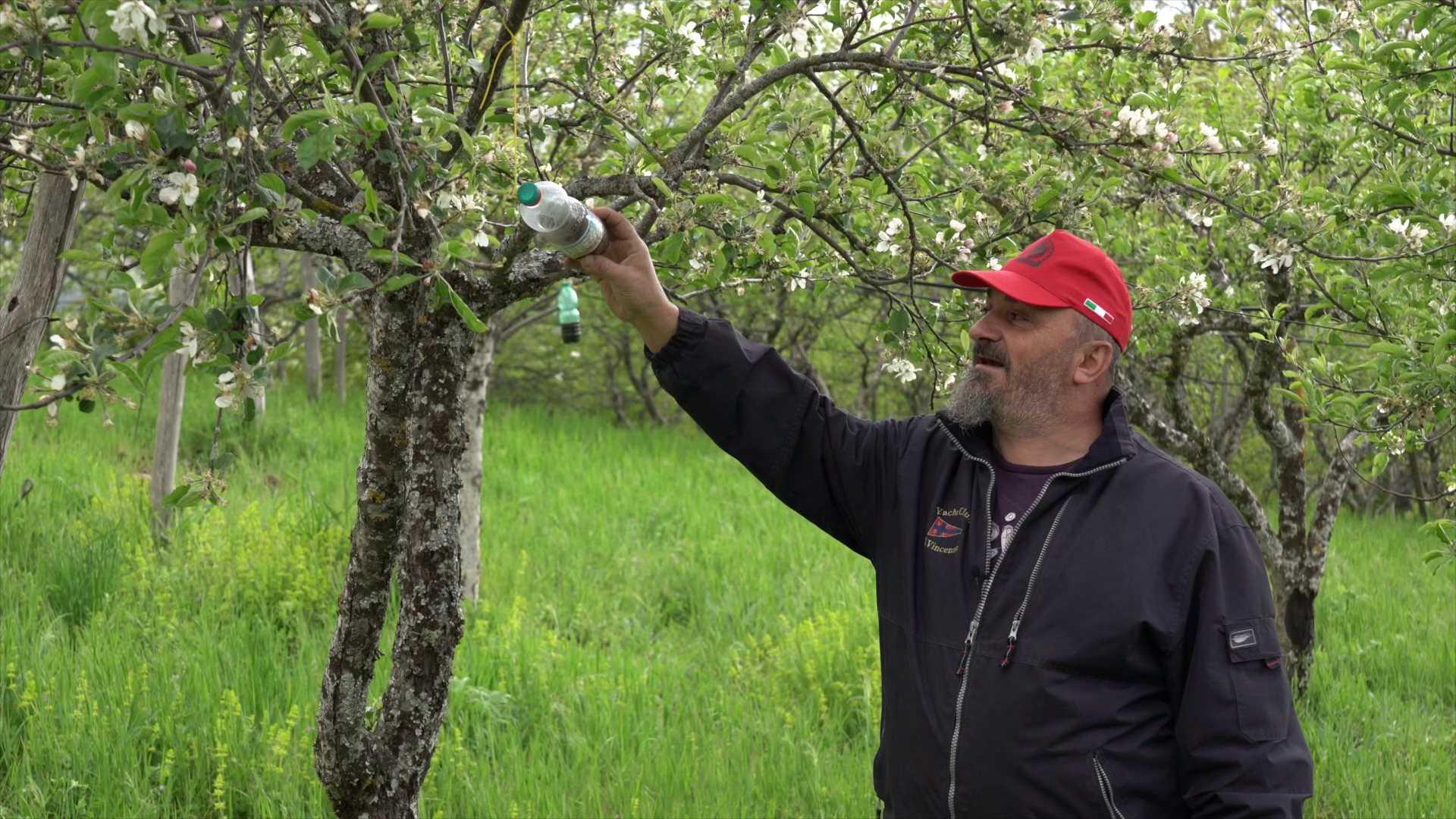 Agriturismo Acacia Produzione biologica di mele